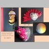 ICH-Objekte 1.jpg